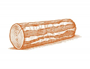 Log-Etching-Vector